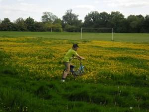 Barbara Laker Grandson-in-Abingworth meadow