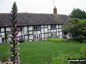 tudorcottages